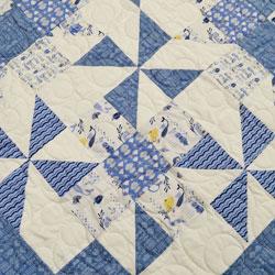 Splash Quilt Fabrics