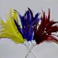 Diamante Feathers